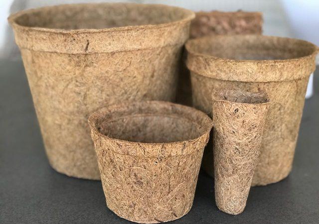 coir-pots-1-640x450